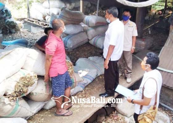 Nusabali.com - pabrik-penyulingan-daun-cengkih-ditutup-paksa