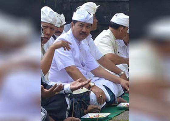 Nusabali.com - gede-darmawa-mendadak-muncul-jadi-kuda-hitam