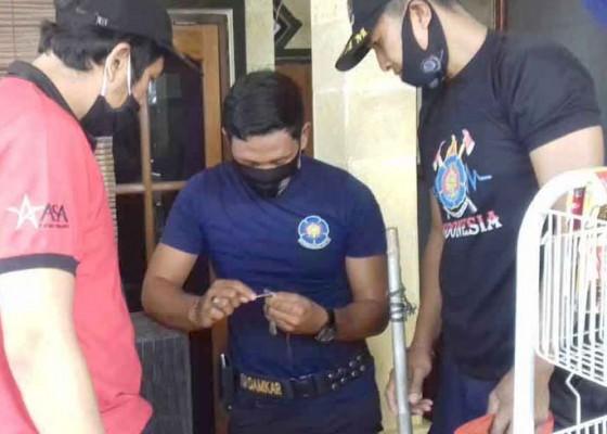 Nusabali.com - petugas-damkar-tangkap-ular-sawah