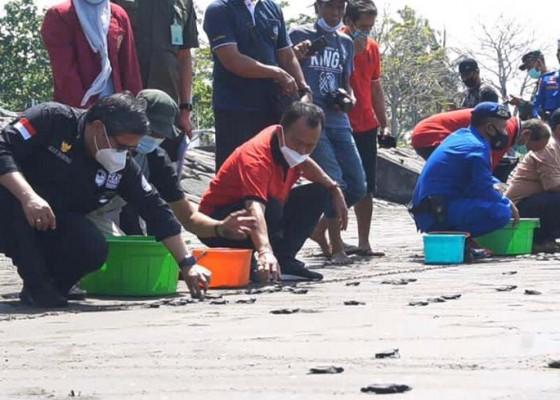Nusabali.com - wamen-lhk-dorong-ekowisata-kpp-kurma-asih-perancak