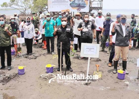 Nusabali.com - padat-karya-mangrove-libatkan-masyarakat-pesisir