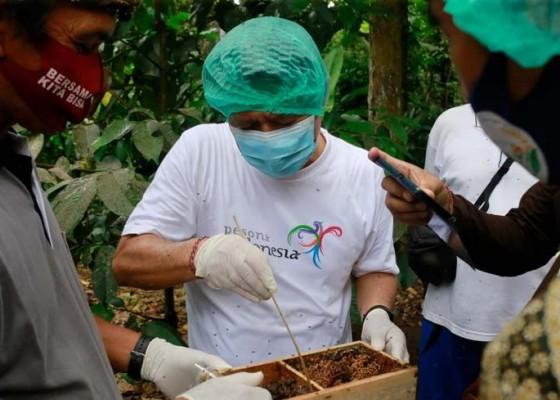 Nusabali.com - bupati-suwirta-akan-bantu-perizinan-sni-hingga-pemasaran-madu-kela
