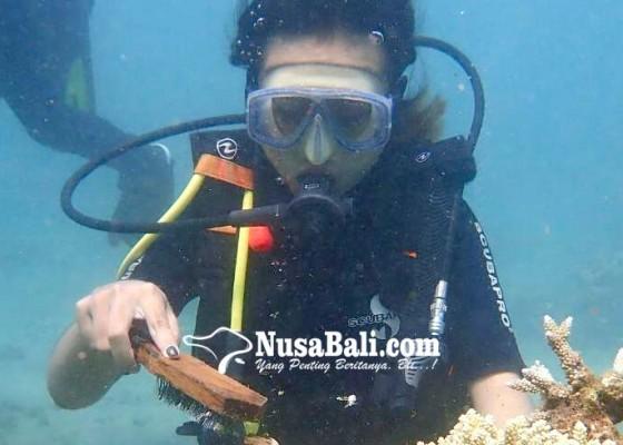 Nusabali.com - pemuteran-bay-festival-2020-tampilkan-beragam-pesona