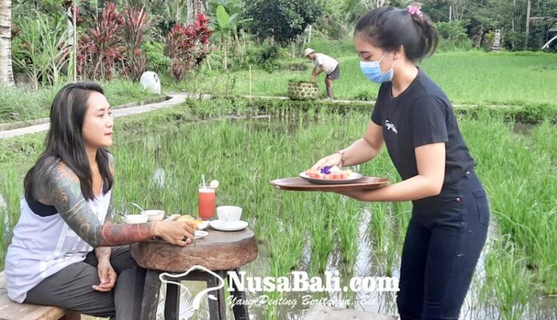 www.nusabali.com-jual-view-dan-kopi-jurus-desa-wisata-gaet-turis-milenial