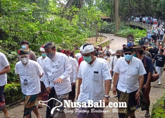Nusabali.com - monkey-forest-dibuka-lagi-ubud-diharapkan-menggeliat