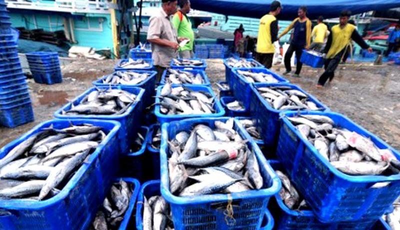 www.nusabali.com-pasar-laut-indonesia-wadahi-1355-umkm