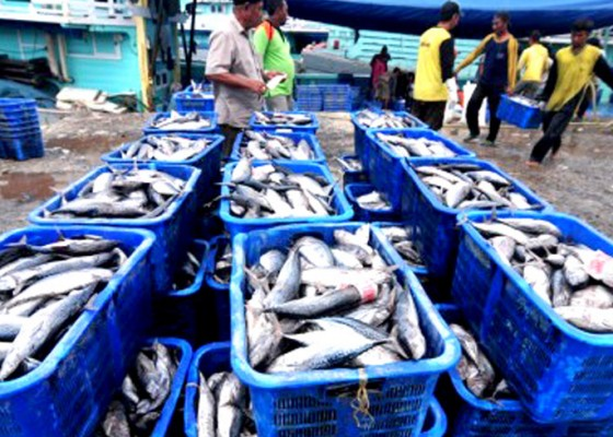 Nusabali.com - pasar-laut-indonesia-wadahi-1355-umkm