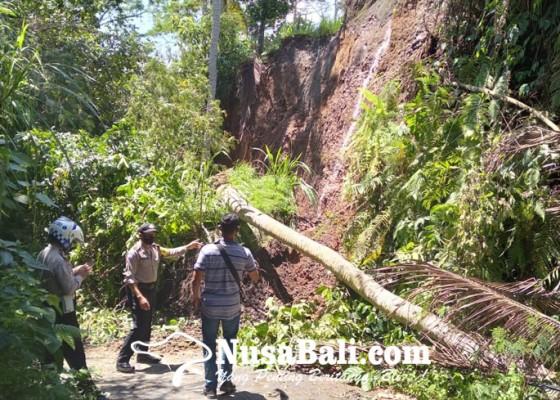 Nusabali.com - tebing-longsor-akses-jalan-selati-gianyar-tertutup