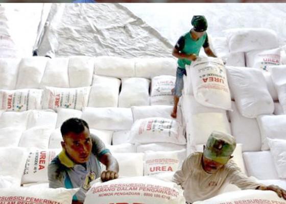 Nusabali.com - kebijakan-pupuk-bersubsidi-masih-merugikan-petani