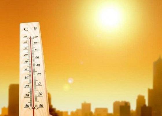Nusabali.com - ternyata-cuaca-panas-dan-gerah-akibat-radiasi-matahari
