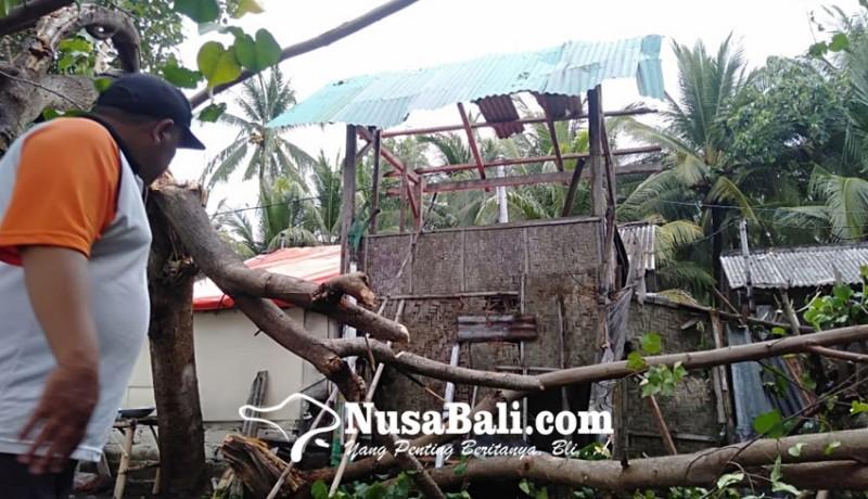 www.nusabali.com-puting-beliung-terjang-gerokgak-buleleng-puluhan-rumah-rusak