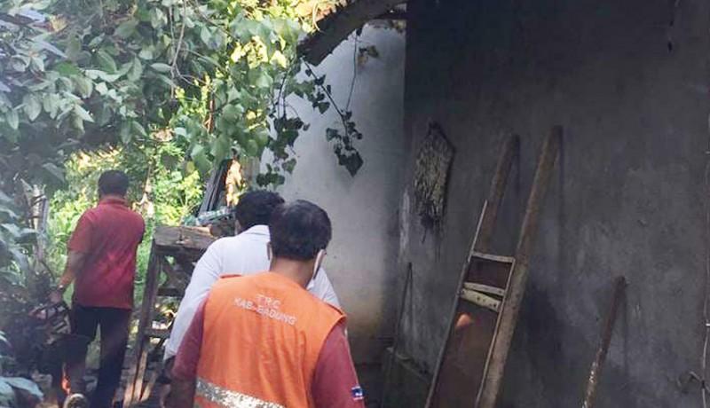 www.nusabali.com-pohon-tumbang-timpa-dapur-dan-bale-delod