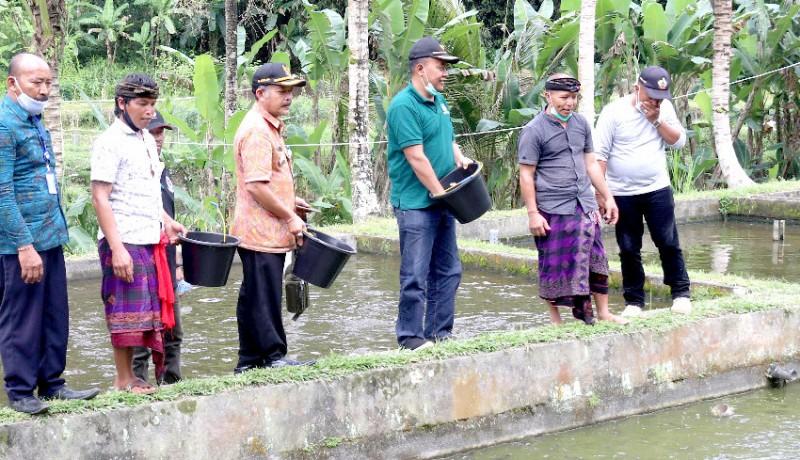 www.nusabali.com-pokdakan-dapat-bantuan-bibit-dan-pakan-ikan