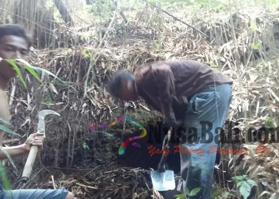 Nusabali.com - lagi-ditemukan-mulut-goa-berjarak-25-meter-dari-temuan-pertama