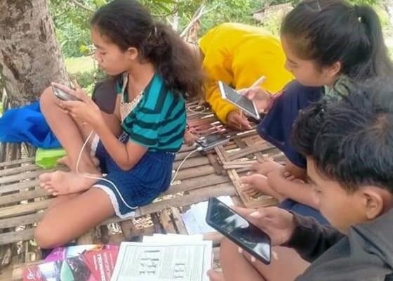 Nusabali.com - tiap-belajar-online-lari-ke-kebun