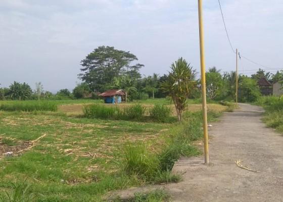 Nusabali.com - krama-subak-payal-kangin-harap-perhatian-pemerintah