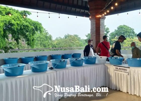 Nusabali.com - penggemar-ikan-koki-di-bali-gelar-pameran-pengunjung-dapat-giveaway