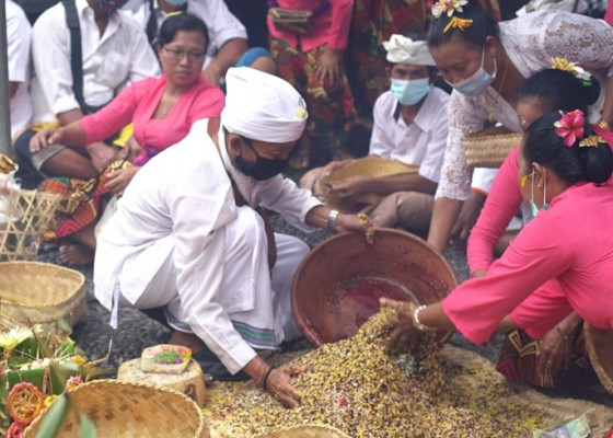 Nusabali.com - upacara-bumi-sudha-di-pura-watu-klotok