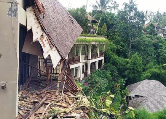 Nusabali.com - empat-villa-dihantam-pohon-tumbang-tamu-selamat