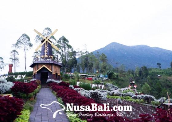 Nusabali.com - taman-edelweis-jadi-tempat-wisata-perfilman
