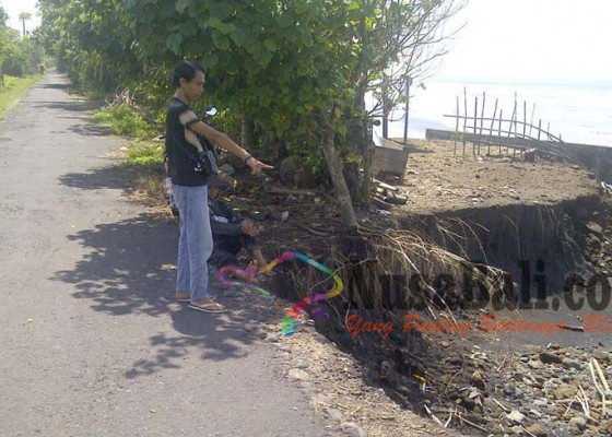 Nusabali.com - terkikis-abrasi-jalan-desa-nyaris-putus