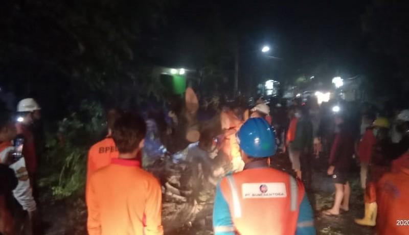 www.nusabali.com-ditimpa-pohon-roboh-satu-keluarga-terluka