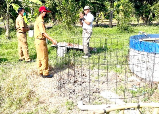 Nusabali.com - tahun-ini-produksi-benih-ikan-air-tawar-melimpah