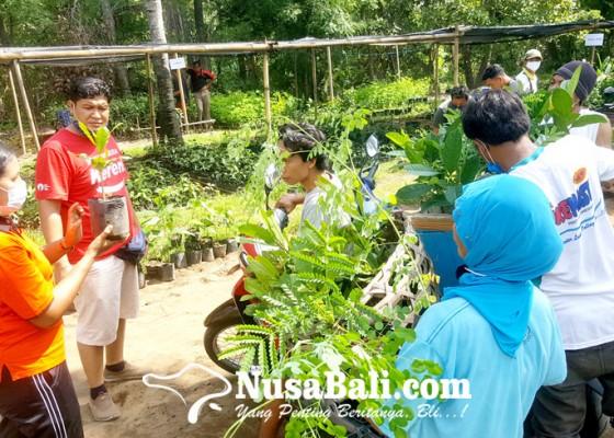 Nusabali.com - desa-tembok-dapat-bantuan-program-kbd