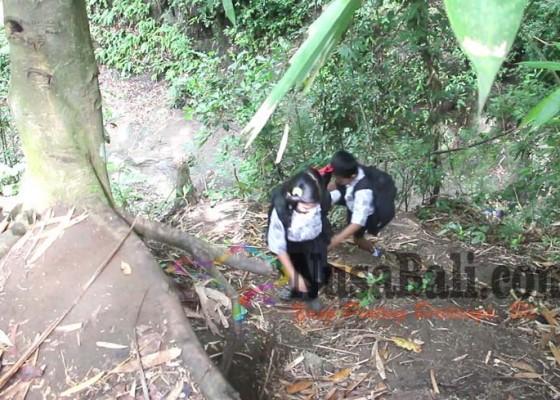 Nusabali.com - bersekolah-melintasi-hutan-sejauh-2-km
