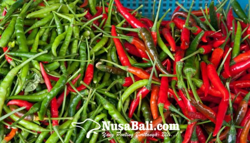 www.nusabali.com-naik-banyak-harga-cabai-di-denpasar-mencapai-rp-85000-per-kilogram