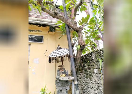 Nusabali.com - tiang-milik-sejumlah-provider-dikeluhkan