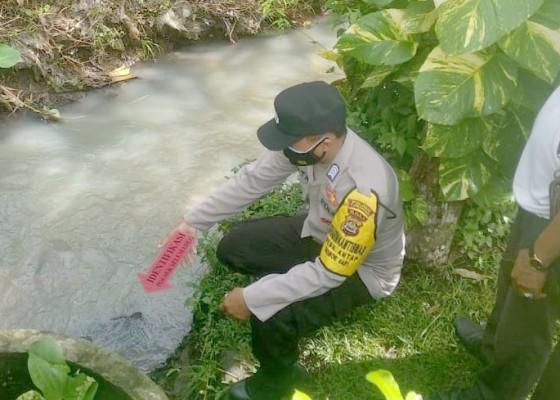 Nusabali.com - nenek-berusia-100-tahun-ditemukan-tewas-di-aliran-subak