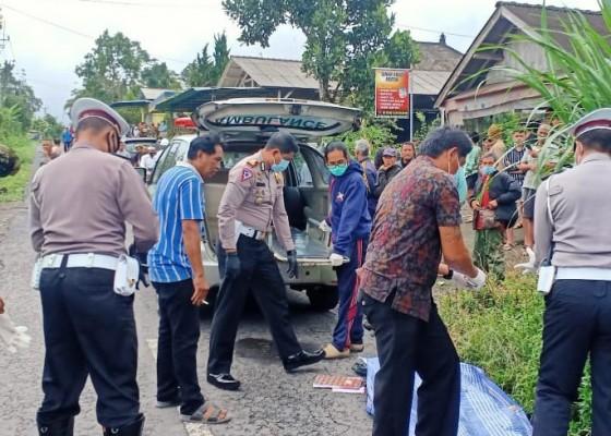 Nusabali.com - oleng-lalu-senggol-mobil-pemotor-tewas