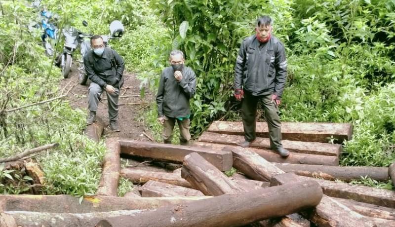 www.nusabali.com-petugas-amankan-terduga-pencuri-kayu-hutan