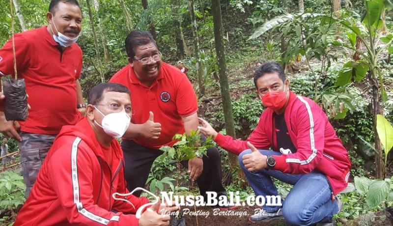 www.nusabali.com-dpc-pdip-buleleng-hijaukan-hutan-desa-panji