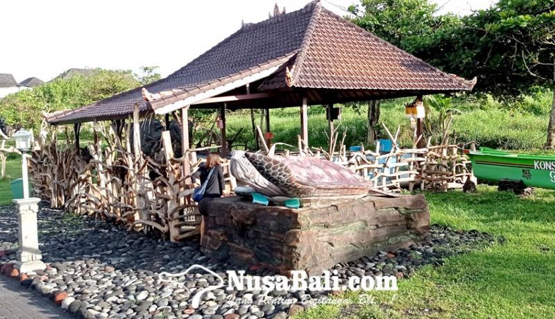 www.nusabali.com-telur-kerap-dimakan-anjing-yeh-gangga-bangun-konservasi-penyu