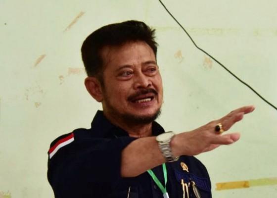 Nusabali.com - mentan-geram-pupuk-kembali-langka