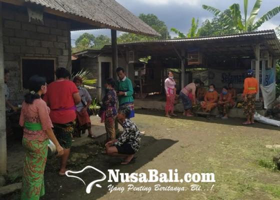 Nusabali.com - tewas-tertimpa-beringin-roboh-usai-mandi-di-sungai