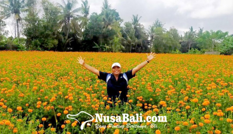 www.nusabali.com-turis-lokal-penyelamat-pariwisata-bali