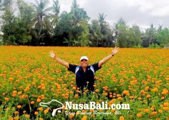 Nusabali.com - turis-lokal-penyelamat-pariwisata-bali