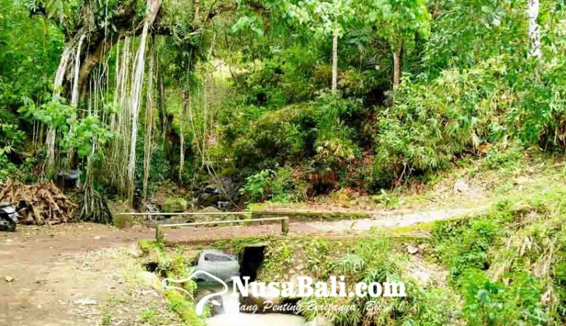www.nusabali.com-desa-sidatapa-kembangkan-wisata-alam-air-terjun