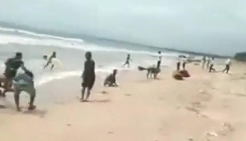 www.nusabali.com-rezeki-dari-laut-ribuan-ikan-lemuru-terdampar-di-pantai-kuta