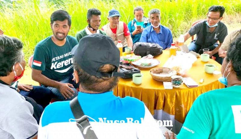 www.nusabali.com-bajatani-pionir-bangun-kebun-organik