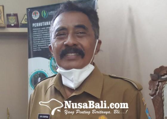 Nusabali.com - blt-dd-dialokasikan-setahun-penuh-desa-kejar-musdes-verifikasi-kpm