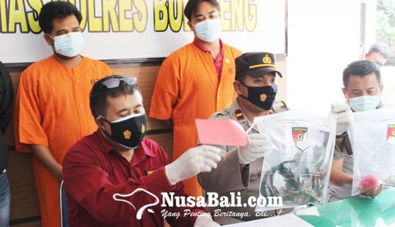 www.nusabali.com-polisi-ciduk-dua-penyelenggara-tajen-di-desa-panji
