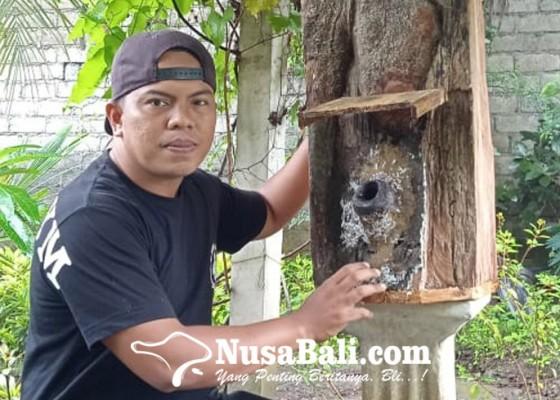 Nusabali.com - sebulan-raup-rp-50-juta-dari-bisnis-madu-di-tengah-pandemi-covid-19