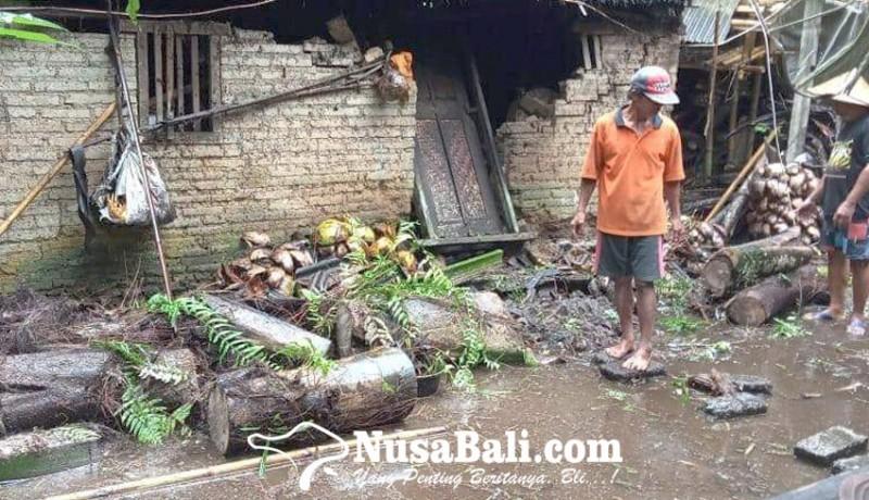 www.nusabali.com-pohon-aren-tumbang-timpa-rumah