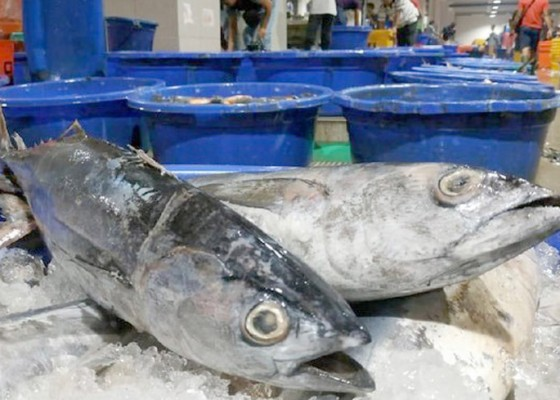 Nusabali.com - nilai-ekspor-ikan-ri-nyaris-rp-73-triliun
