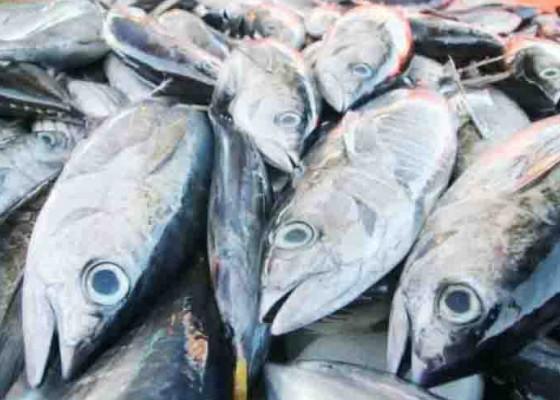 Nusabali.com - produk-tuna-ri-raih-sertifikasi-standar-global