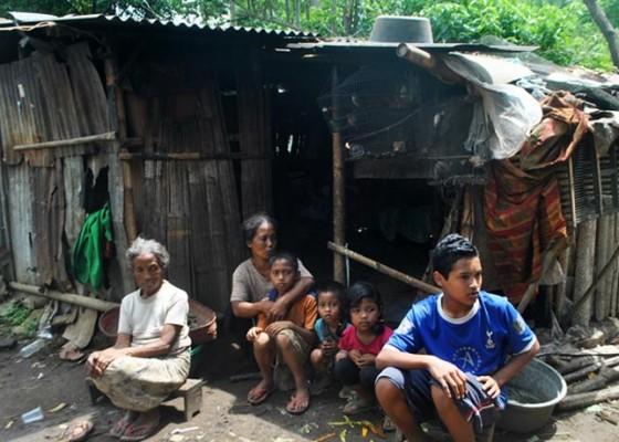 Nusabali.com - sekeluarga-8-orang-tinggal-di-gubuk-reot-hidup-dari-canang